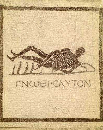 skeletongnothi